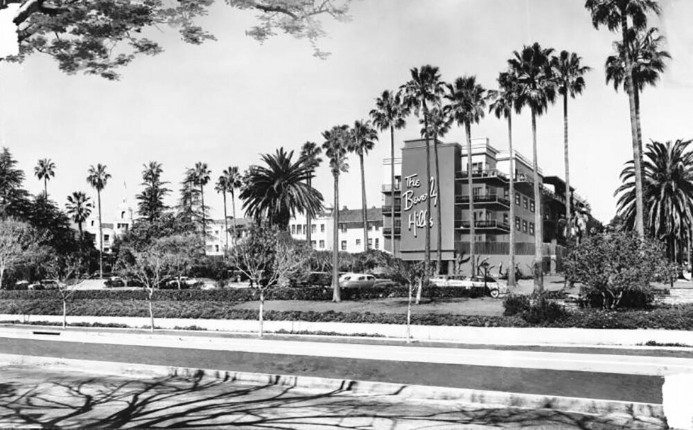 Palm trees outside the Beverly Hills Hotel, 1949.