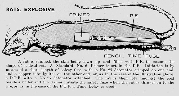 "How the explosive rats were made, from the SOE's ""Descriptive Catalogue of Special Devices and Supplies,"" a brochure circulated to country sections and agents."