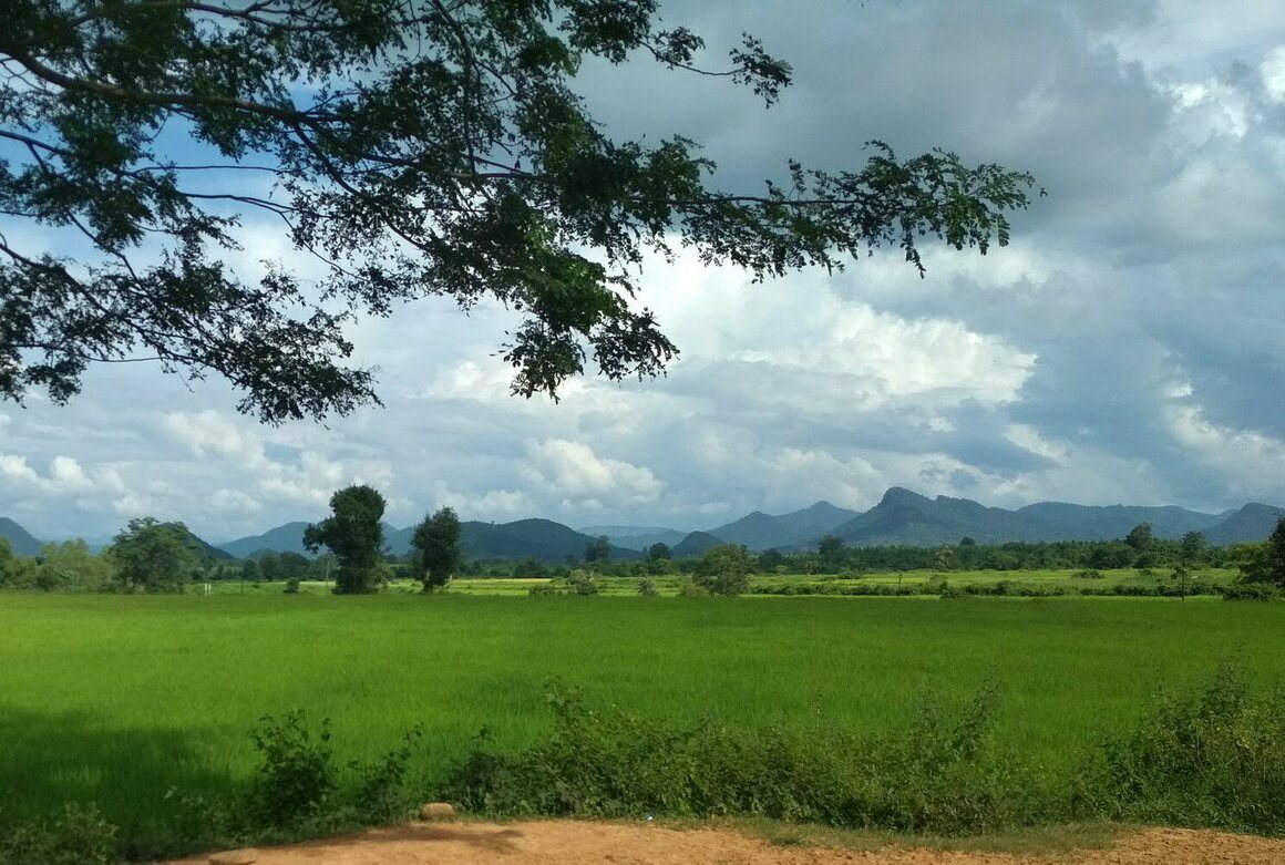 Basudha, located in the village of Kerandiguda, is set against the picturesque Niyamgiri Hills, seen in the distance.