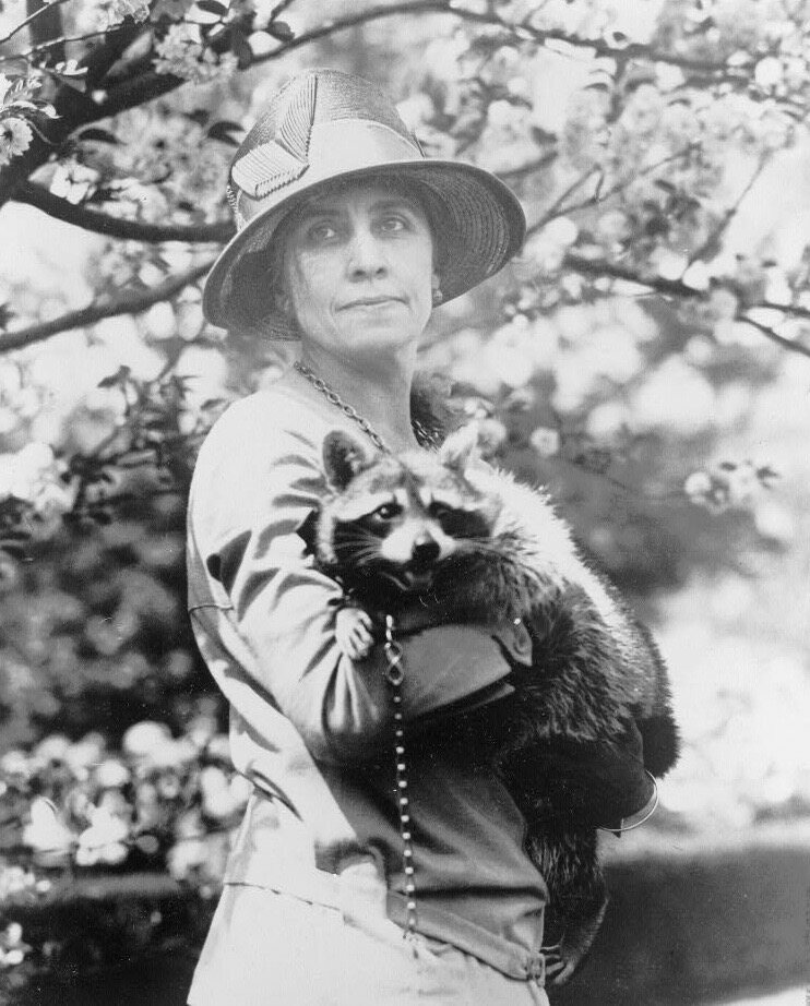 Rebecca the Raccoon often escaped her cage and led White House aides on hours-long pursuits around the property.