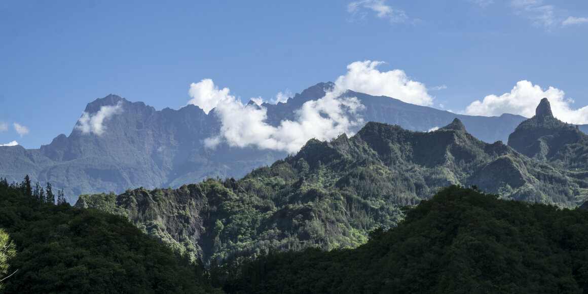 The mountainous Réunion has seen a significant decline in frugivore biodiversity over the centuries.
