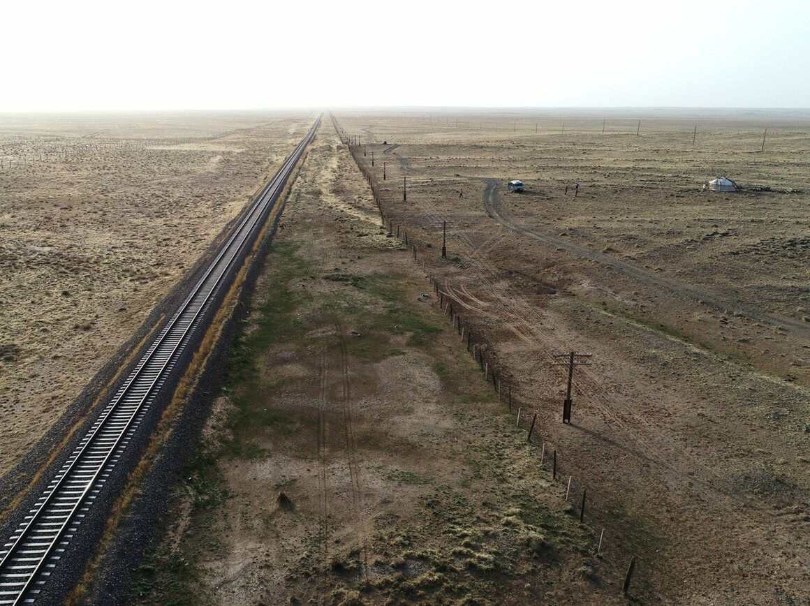 The Trans-Mongolian Railway stretches across the country, splitting the ungulates' habitat into east and west.