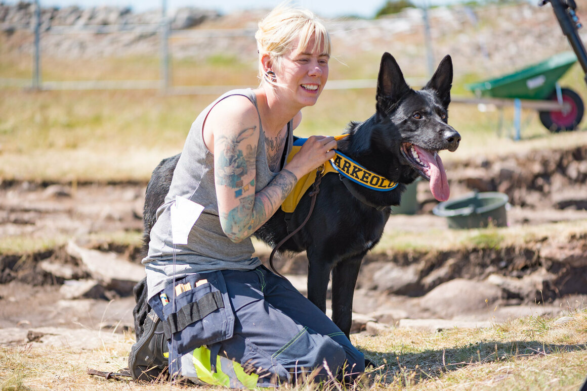 Sophie Vallulv, an archaeologist based in Sweden, trained her dog Fabel to help find remains in an Iron Age site.