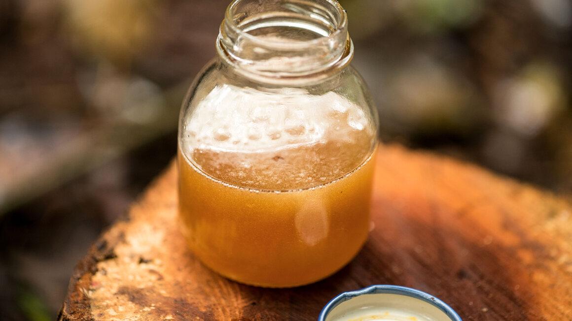 A jar of freshly harvested <em>Meliponini</em> honey.