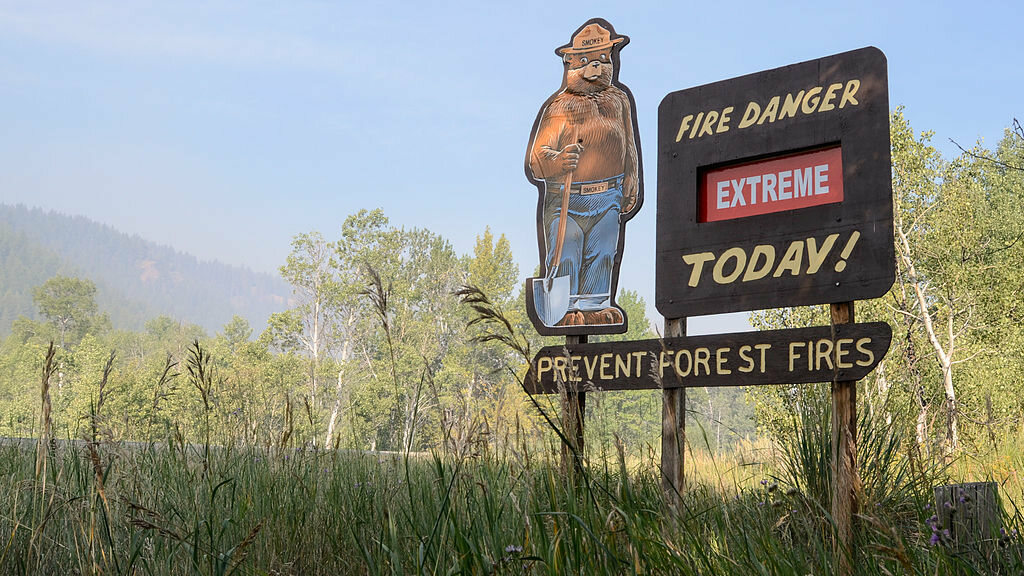 Smokey Bear remains a symbol of forest fire prevention.