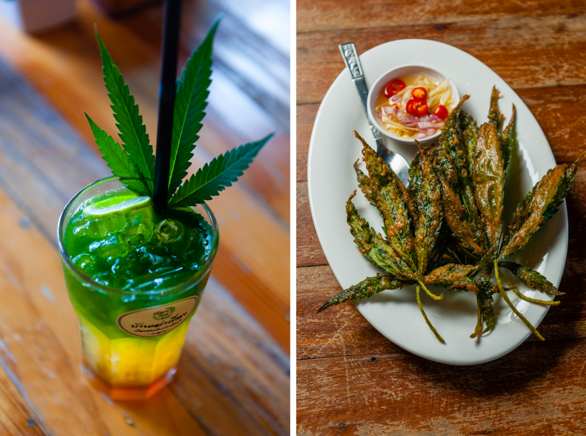 A drink of tea, passionfruit juice, and freshly juiced raw marijuana leaves at Ban Lao Reung (left) and their marijuana tempura (right).