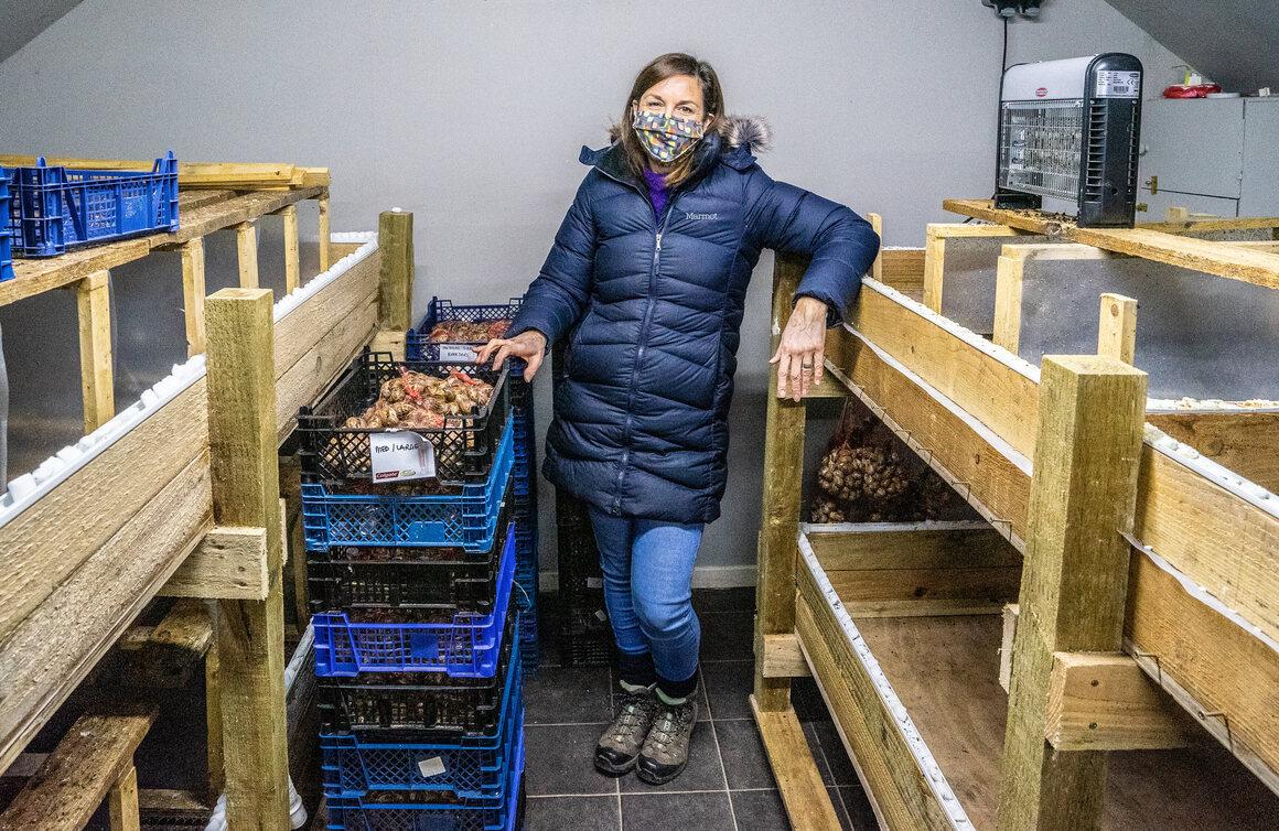 Paxman in the snails' hibernation attic.