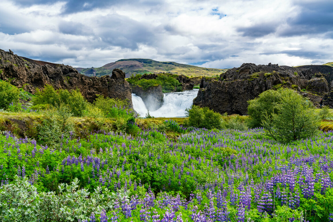 The Hjalparfoss waterfalls in the highlands of Iceland.