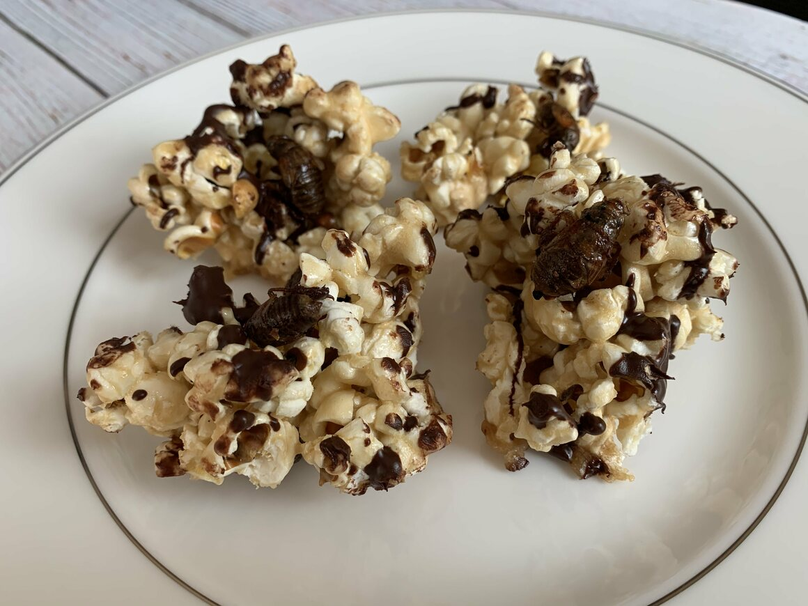 Crunchy, sweet, and savory nymph popcorn.