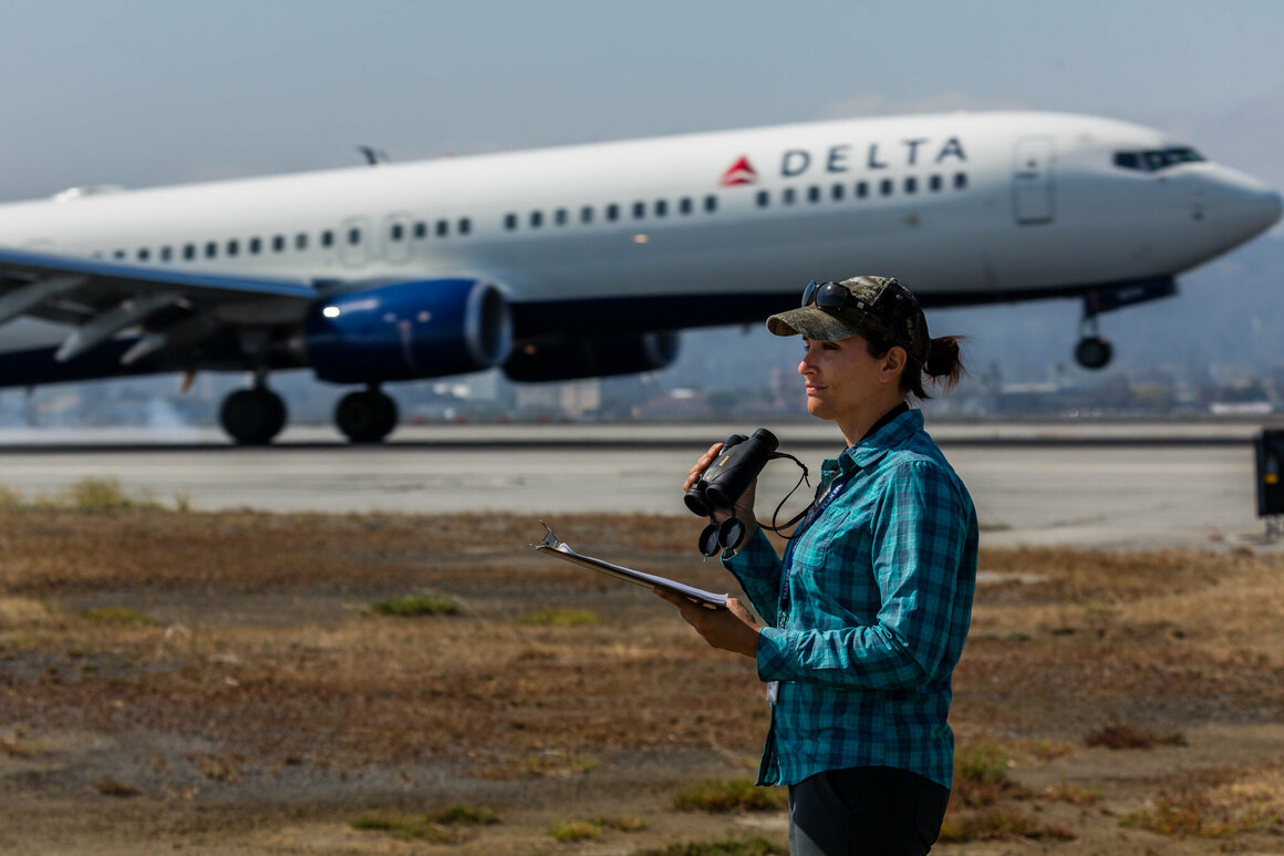 SFO Airport Biologist Natalie Reeder has led efforts to protect and preserve the West of Bayshore property.