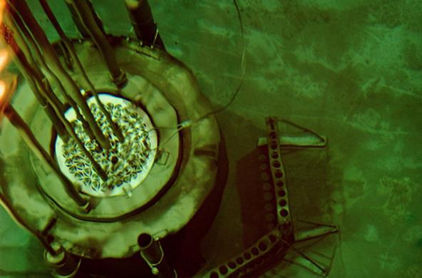Reed Reactor