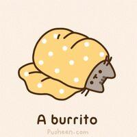 Profile image for burrito