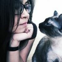 Profile image for hellogigi