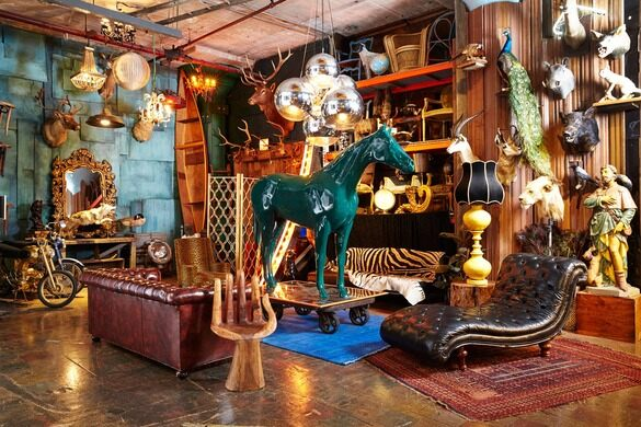 ACME studios teeming with taxidermy and other curiosities