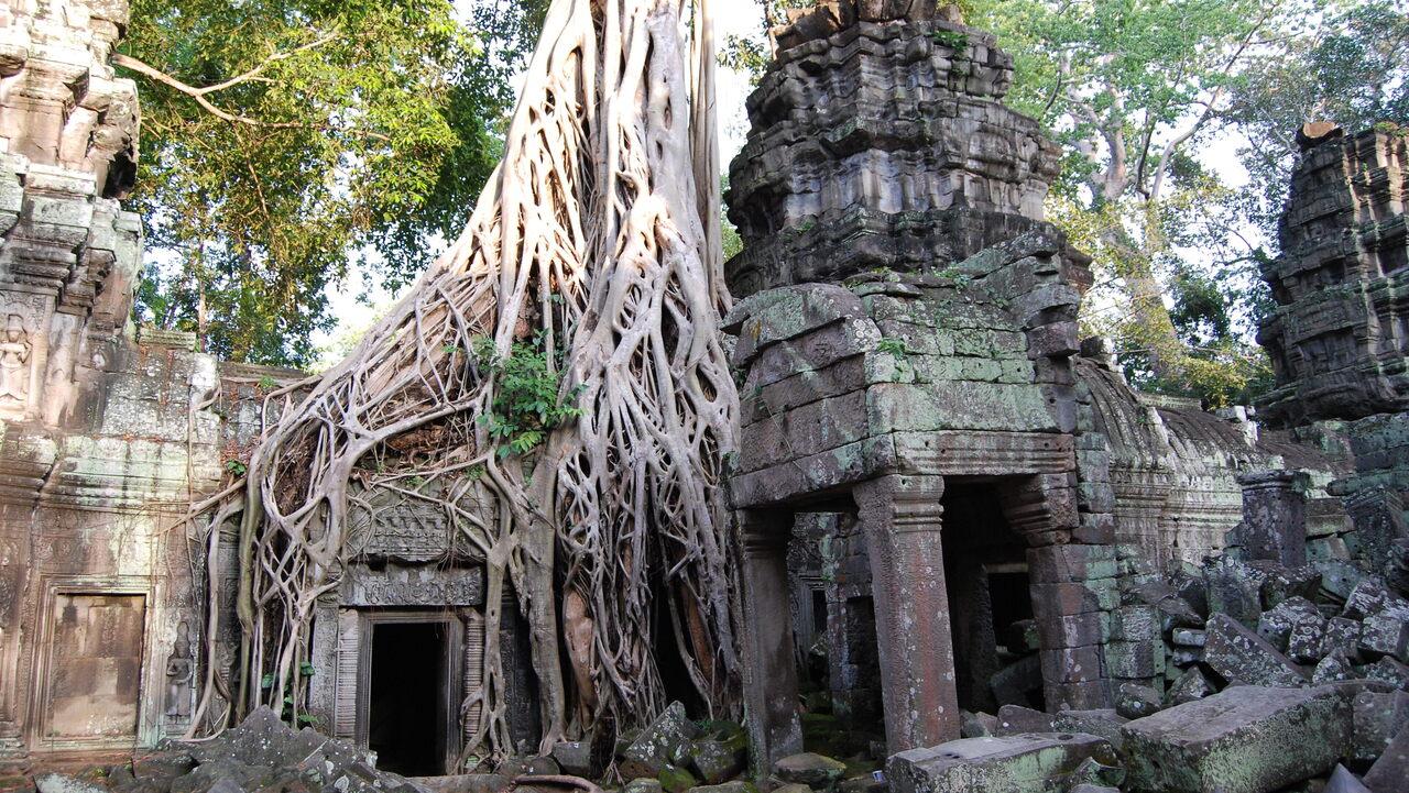 Ta Prohm Temple, Angkor, Cambodia.