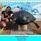 Delray Beach Travel Wiki