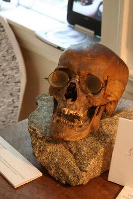 Skull inside the Edward Gorey House