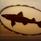 dogfishhead