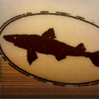 Profile image for dogfishhead