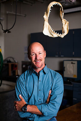 Director of the Shark Lab, Dr. Chris Lowe