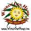 Winkin Sun Hemp
