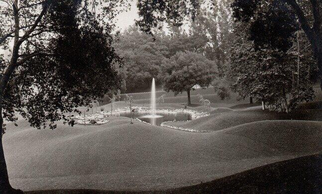 Busch Gardens Lake - postcard