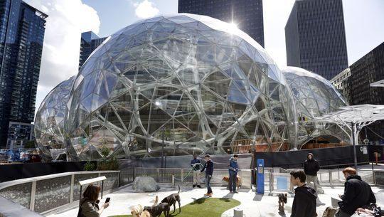 Amazon Biospheres