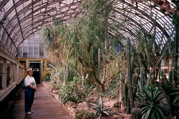 A view of the Desert House in the late '90s.