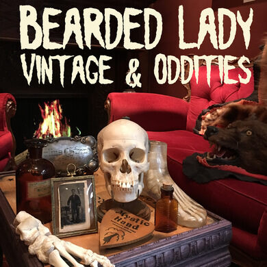 Bearded Lady Antques & Oddities