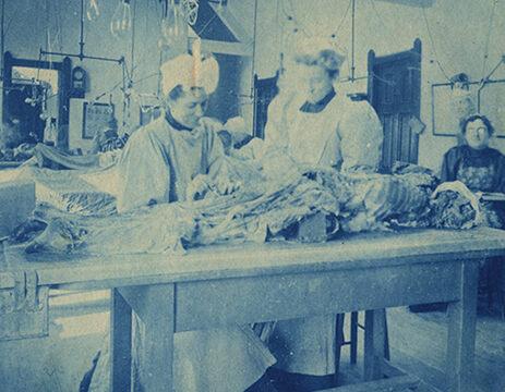 Autopsy scene.