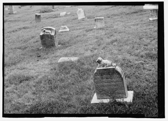 Infant headstones at Congressional Cemetery.