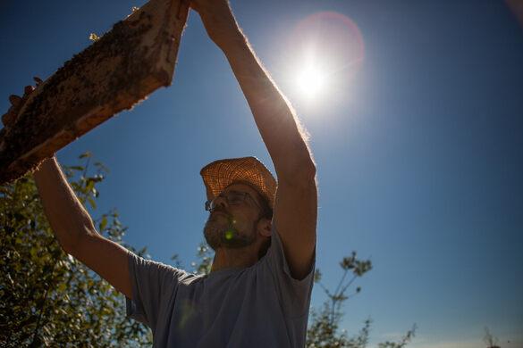 Beekeeper Bob Redmond of Urban Bee Company.