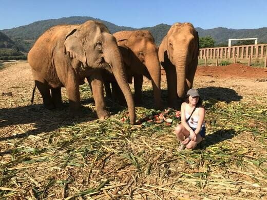 Nikki Vargas volunteering with elephants in Thailand