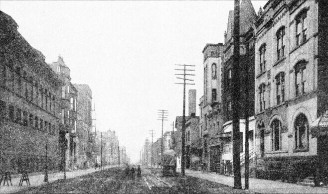 The notorious Levee District, home of Chicago's First Ward Ball, along with the city's brothels, saloons, and gambling parlors.