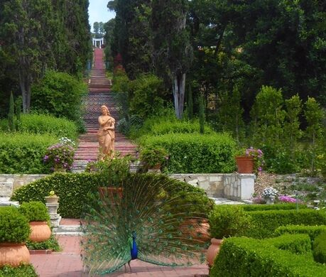 Garden at Villa Narcissa