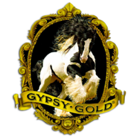 Profile image for Gypsy Gold Horse Farm