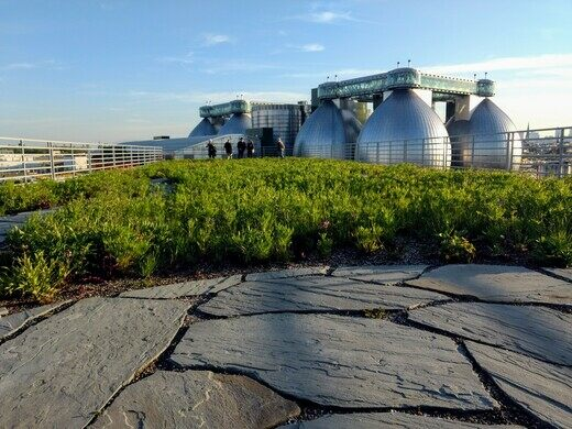 Kingsland Wildflowers at Broadway Stages Overlooking Newtown Creek Wastewater Treatment Plant Digester Eggs