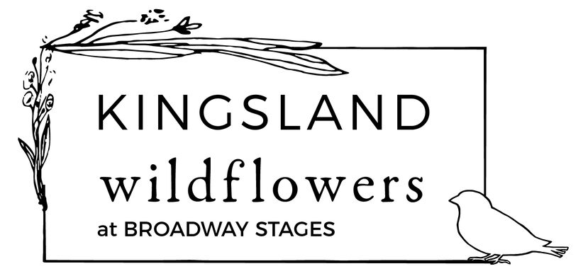 Kingsland Wildflowers at Broadway Stages.