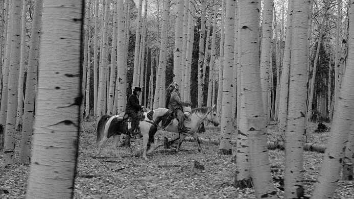 Riding through the trees in Dead Man.