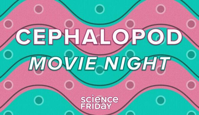 Cephalopod Movie Night!