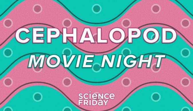 Cephalopod Movie Night