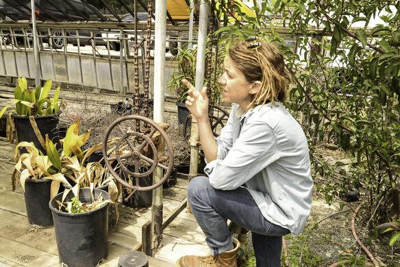Exploring native plants.