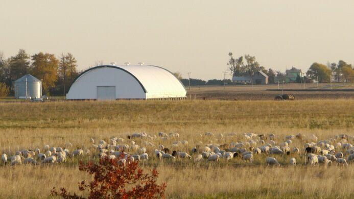 Farm around Stelle.