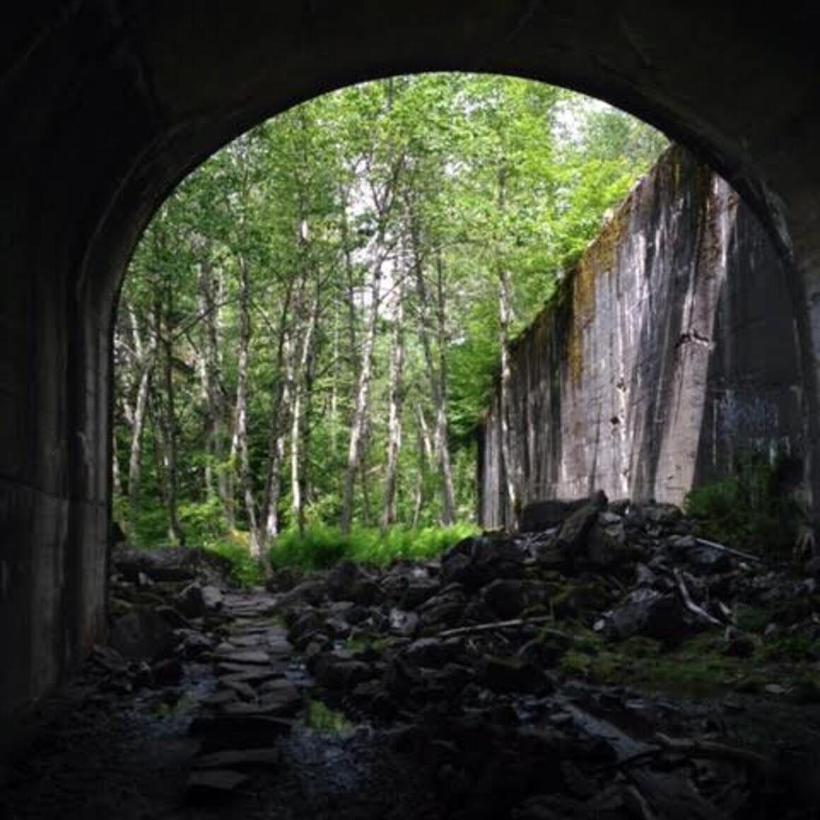 Wellington Tunnel.