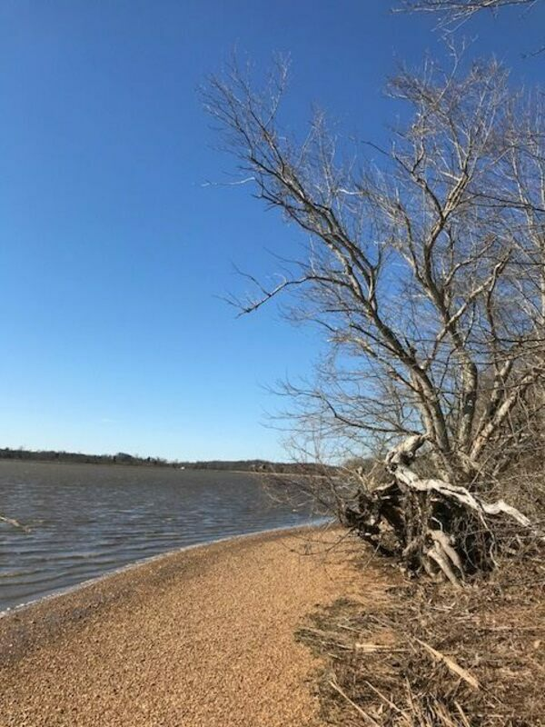 The shores of the Patuxent River.