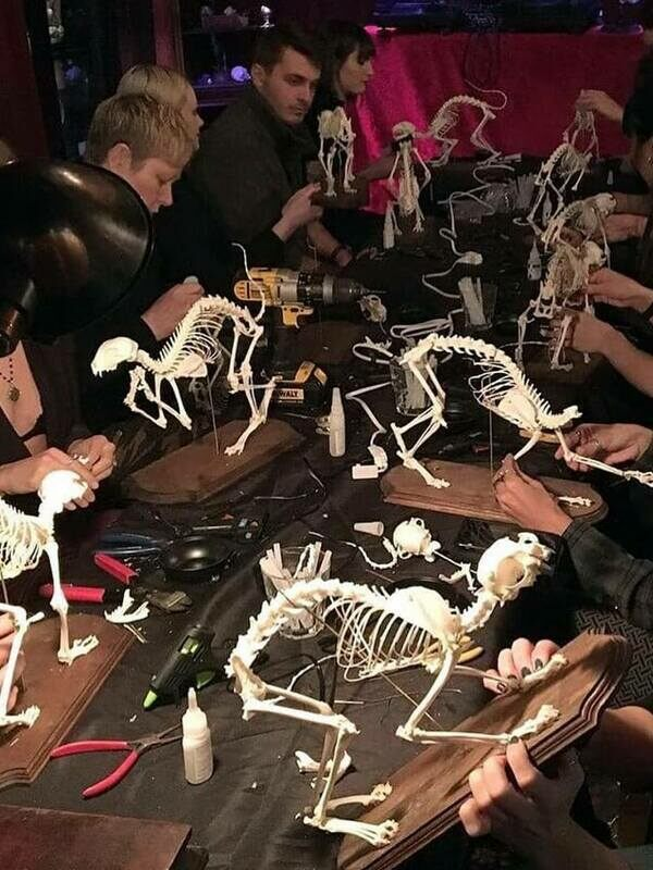 Students working on their skeletons.