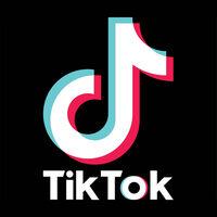 Profile image for tiktokfollower