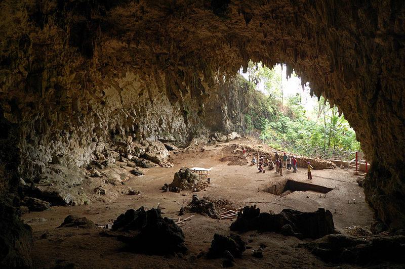 The island cave where the remains of <em>Homo floresiensis</em> were found.