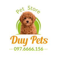Profile image for duypets