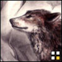 Profile image for ninahansonzi2
